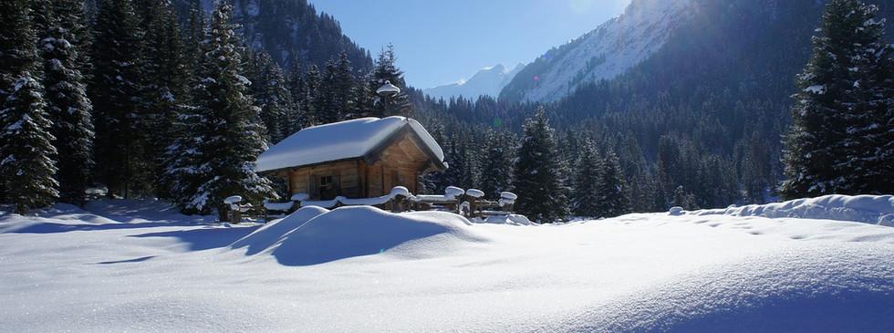 winter-3833527_1280.jpg