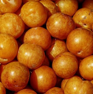 apricot-2805732_1280.jpg