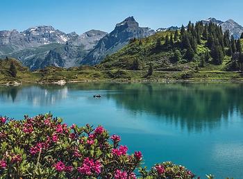 Schweiz.webp