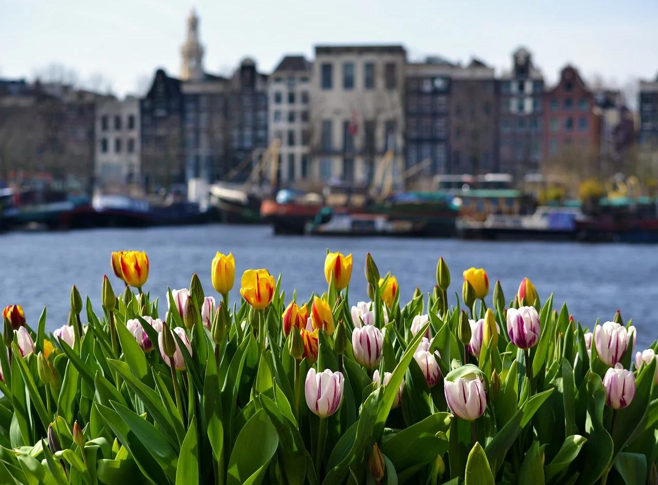amsterdam-4350882_1280.webp