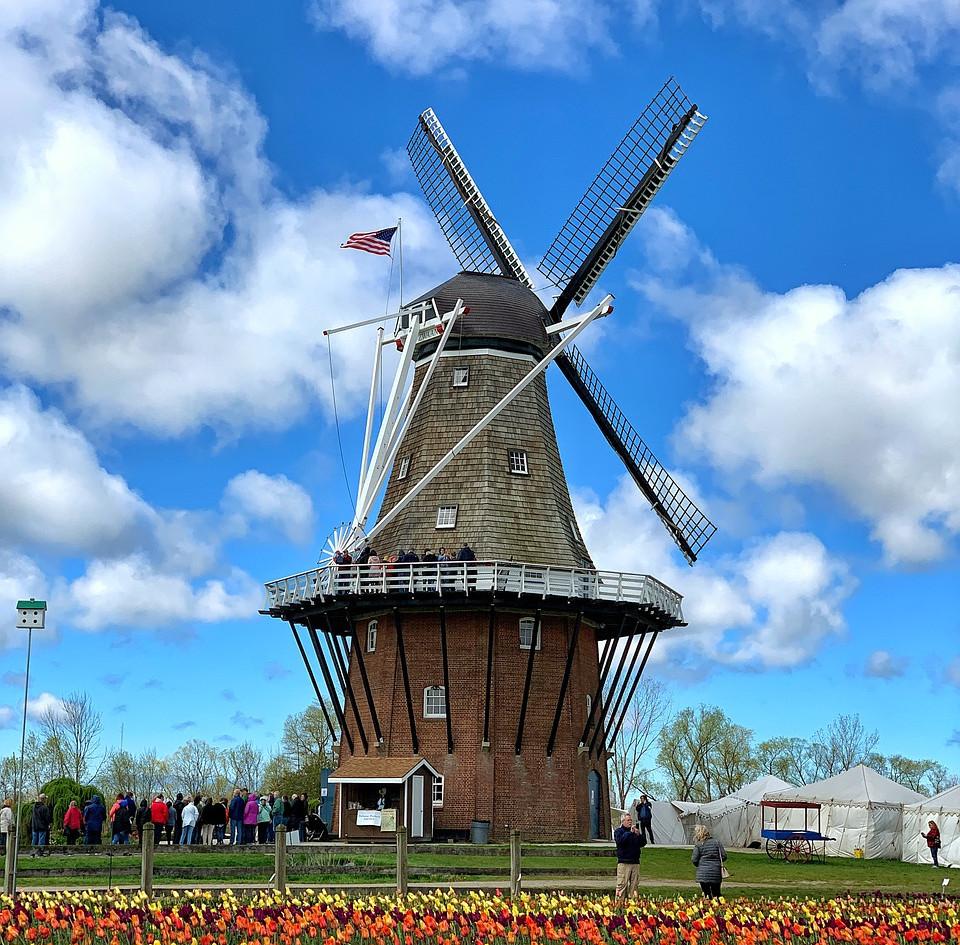 holland-4484326_1280.jpg