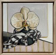 sam michelle 'orchid & cape' 28x28cm 2021 $1,650