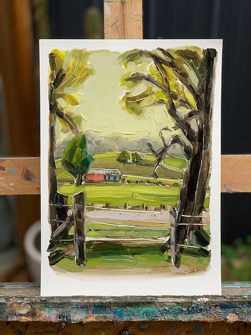 Landscape Study 12