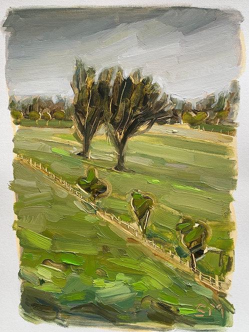 Landscape Study 8