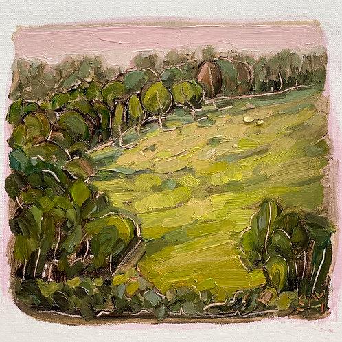Landscape Study 10