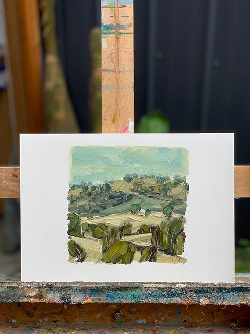 Landscape Study 9