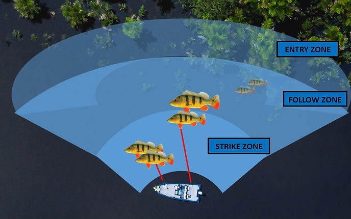strike%20zone_edited.jpg