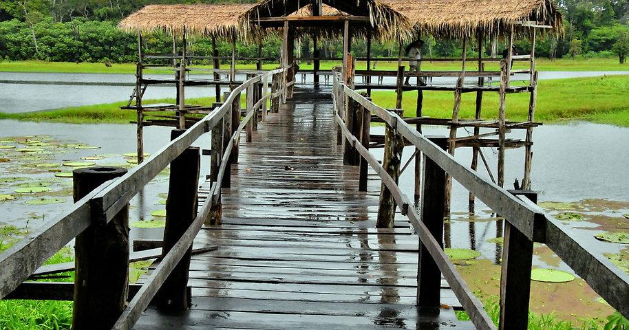 Brazil-Manaus-Janauari-Ecological-Park-V