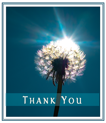 Thank You - Notecard Pack