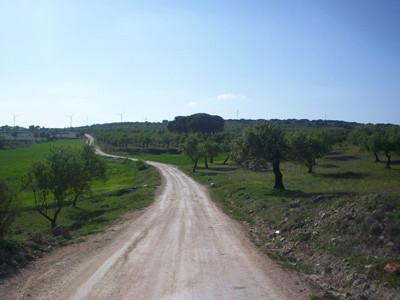 Camino a Portachuelo