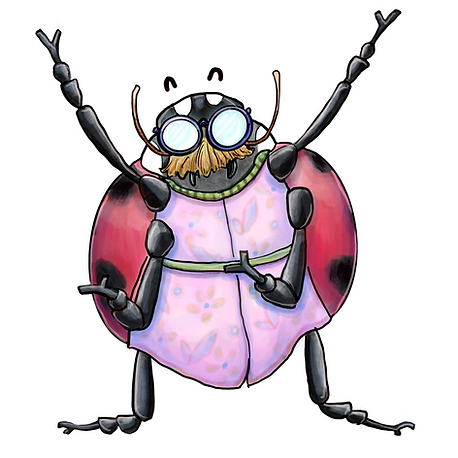 mister ladybug