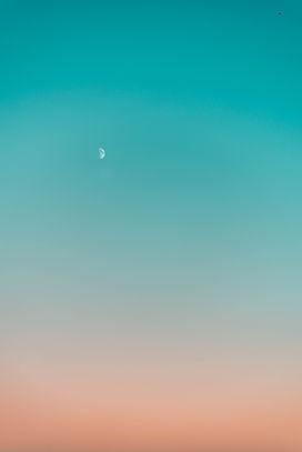 pexels-stanislav-kondratiev-3461640.jpg