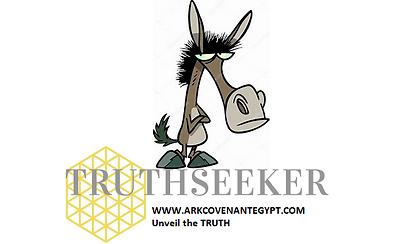 mule logo1 card.png