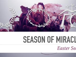 Season of Miracles - Part 2