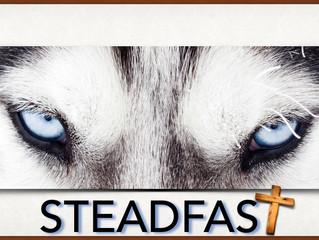 Be Steadfast - Week 4