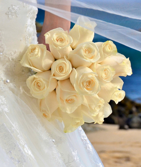South African cream rose bridal bouquet