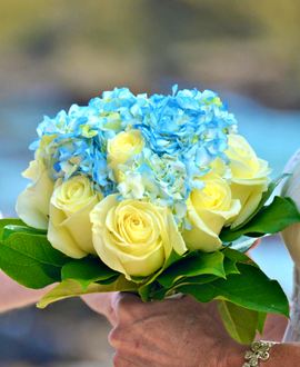 Cream rose and blue hydrangea bridal bouquet