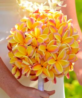 Rainbow plumeria bouquet