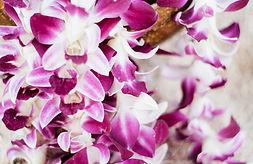 Purple Leis.jpg