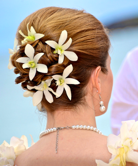 White orchids with hairpins as hair flowers