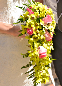 Cascading bouquet of green orchids and pink roses