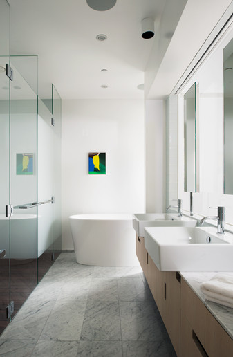 Modern Luxury Interior Residential Bathroom
