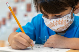 Boy Student Mask Assignment