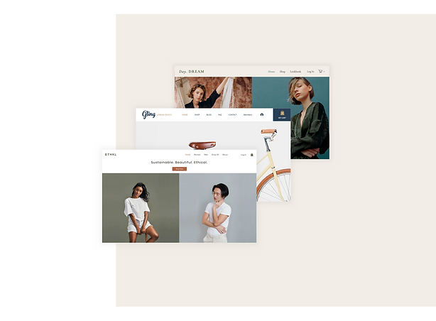 Professional online stores built on Wix templates.png