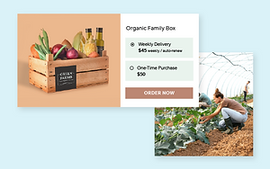An organic vegetable online store built on Wix offering their products as a subscription.