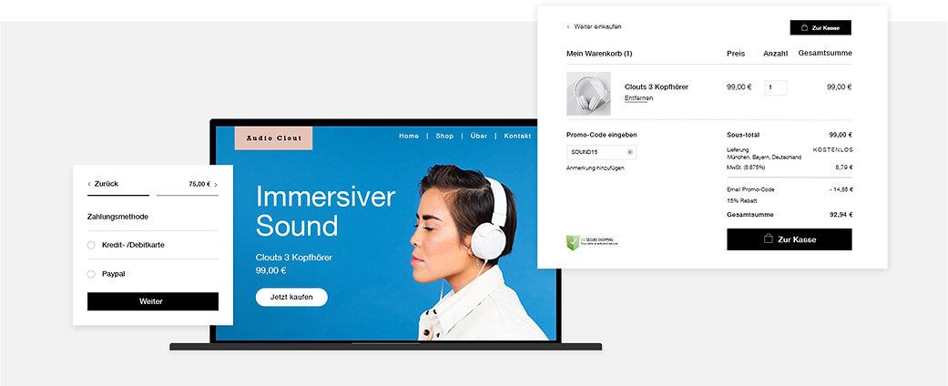 Storefront eines Onlineshops für Audio-Zubehör mit Zahlungsoptionen, Warenkorb und Kassenbereich.