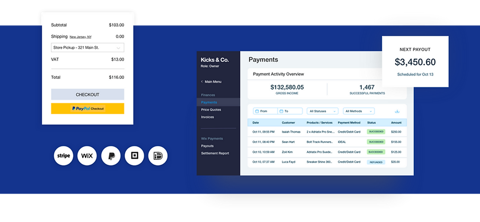 Payments overview for a Wix online store with checkout, transaction table and payout balance