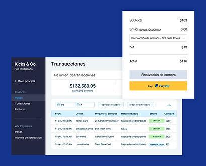 Resumen de transacciones para una tienda online de Wix con finalización de compra, tabla de transacciones y saldo de pagos