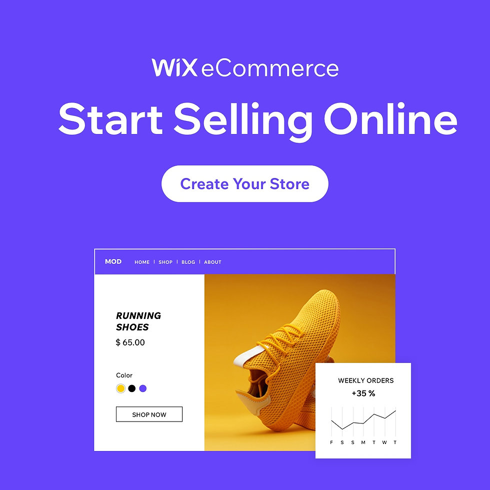 Start selling online with Wix eCommerce banner