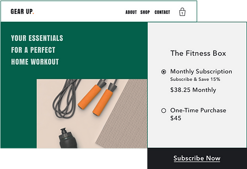 Exercise equipment online store selling a subscription box with Wix