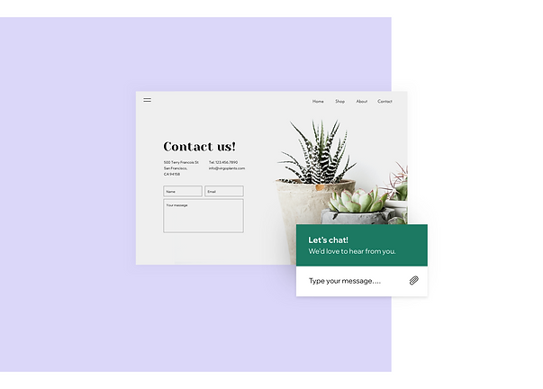 Contact page and live chat for a houseplants online store