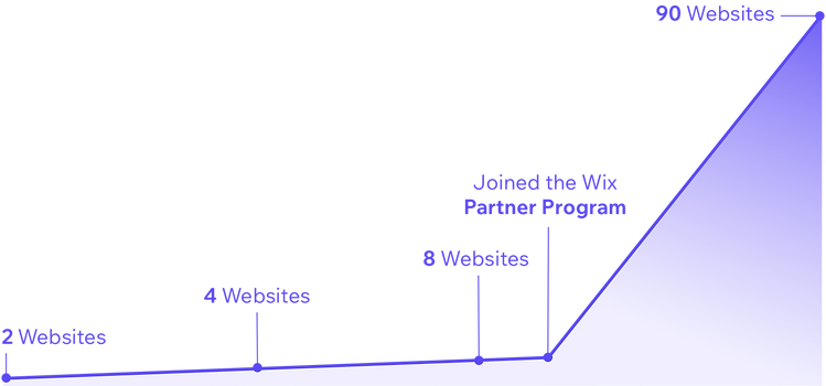 Number of websites created in 2017, 2018, 2019 and 2020.