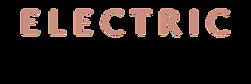 Logo for Electric Lash Lounge