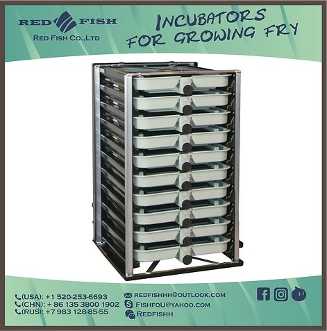 10 Trays Incubator by Red Fish