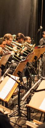 5- Lulu Santos - Músicos.jpg