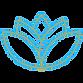 CBD Spa Logo (2).png