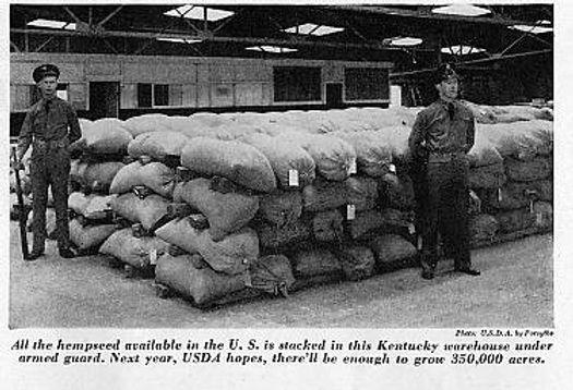 1942 HEMP SEED SUPPLY.JPG