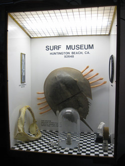 The Theft of Dick Dale's Guitar From The Surf Museum.jpg