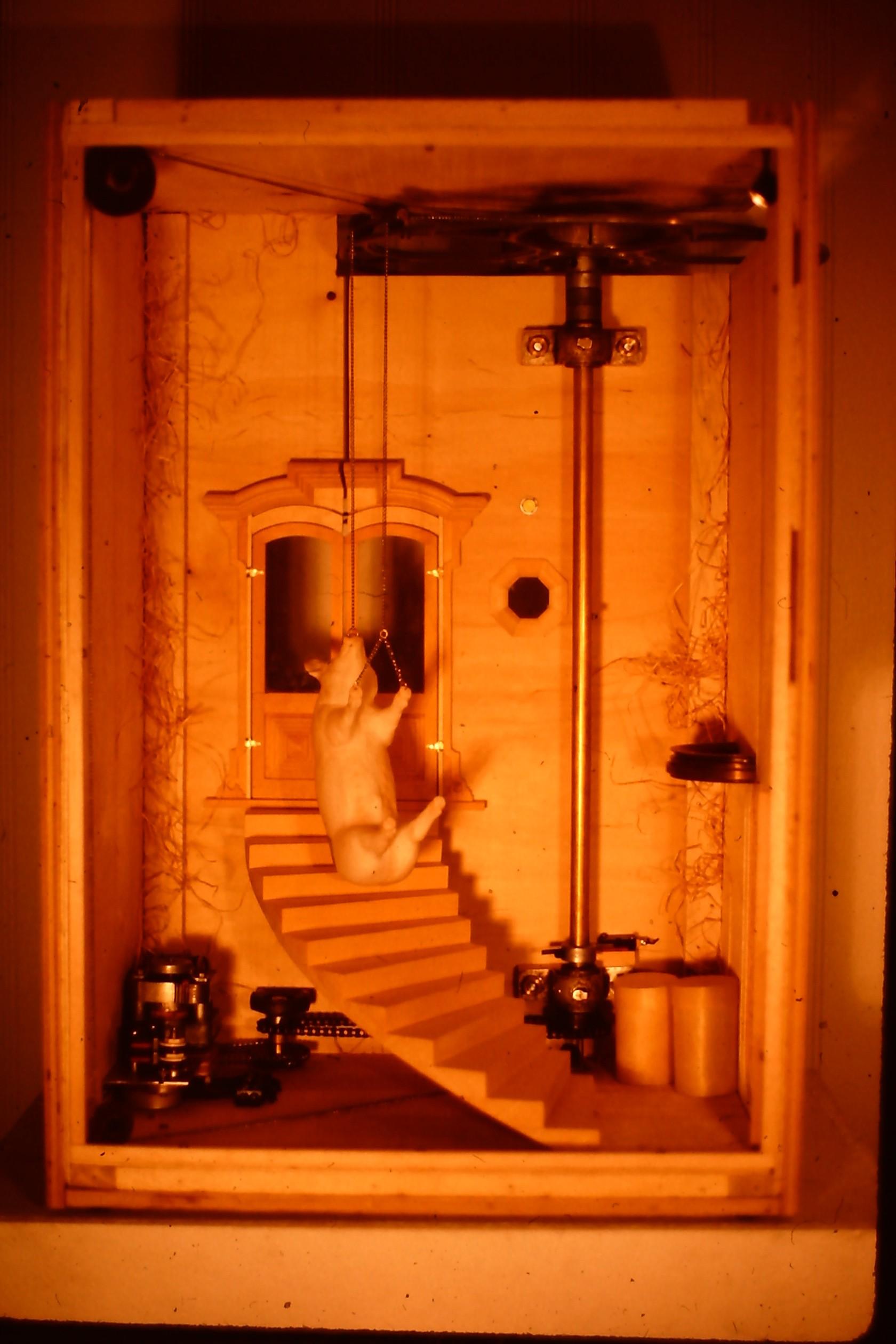 Pig Descending a Staircase.JPG