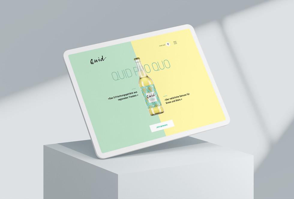 Quid_iPad_1.jpg