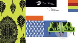 Patium | Asita Collection