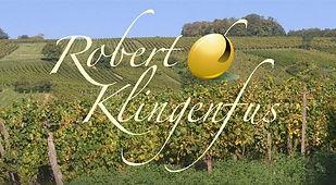 Robert%20Klingenfus_edited.jpg
