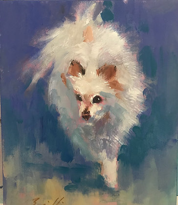 PET PORTRAITS by RAY BRILLI