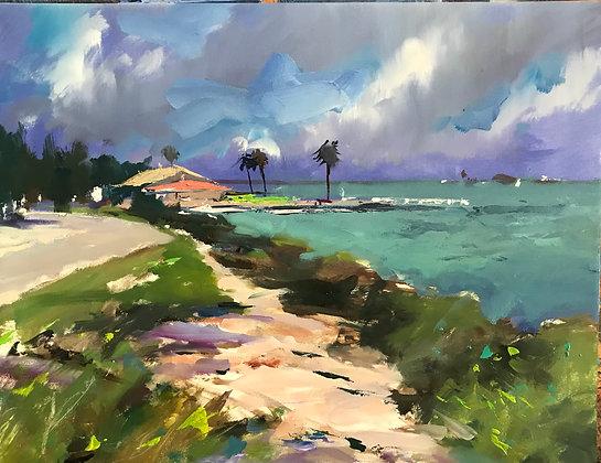 SOLD. —-Davis Shores Anastasia Island