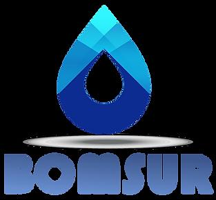 LOGO BOMSUR PNG.png