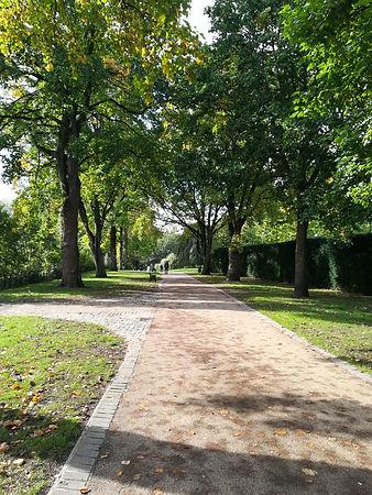 park_path_portrait.jpeg